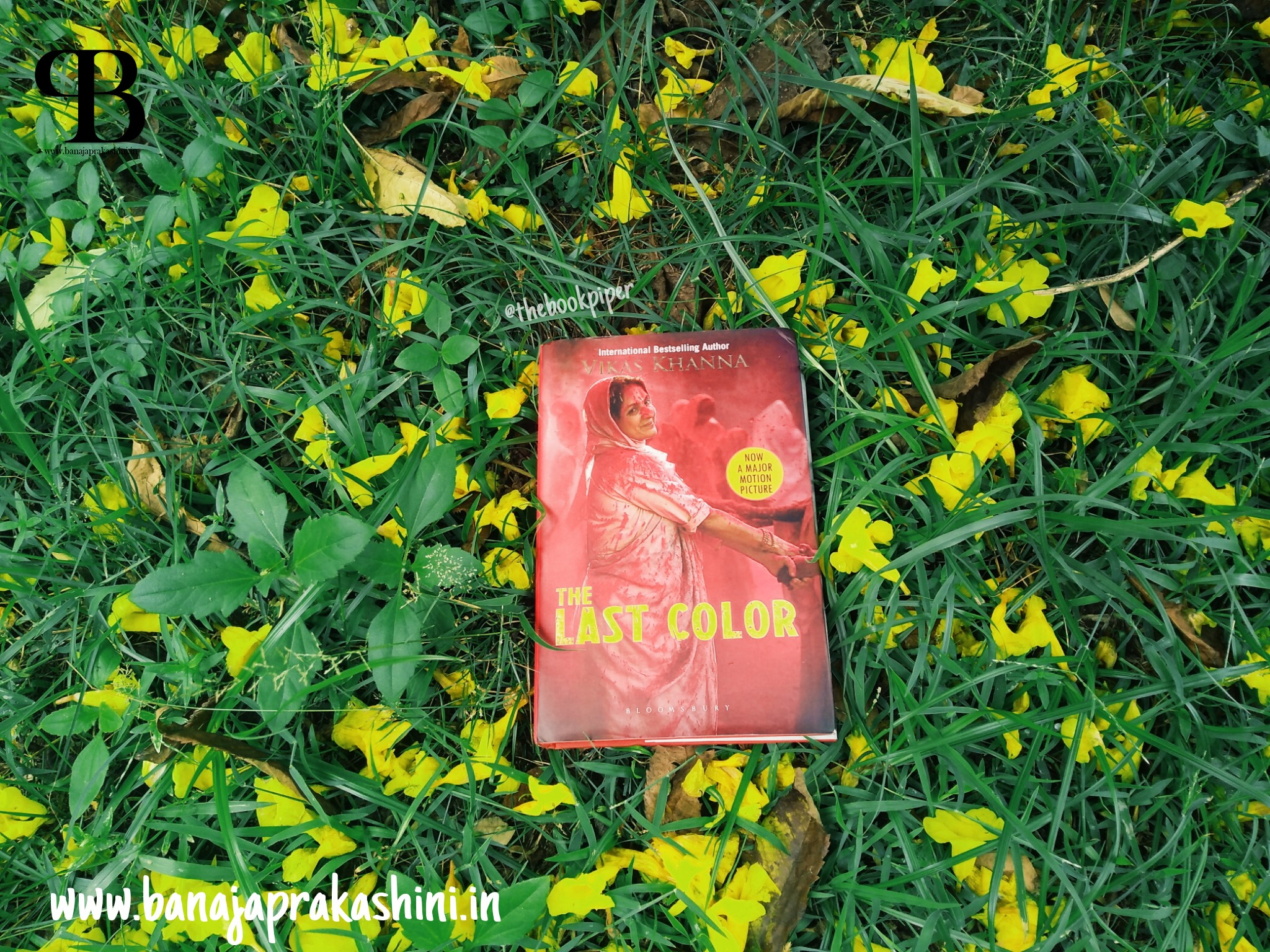 Review Pen: The Last Color by Vikas Khanna