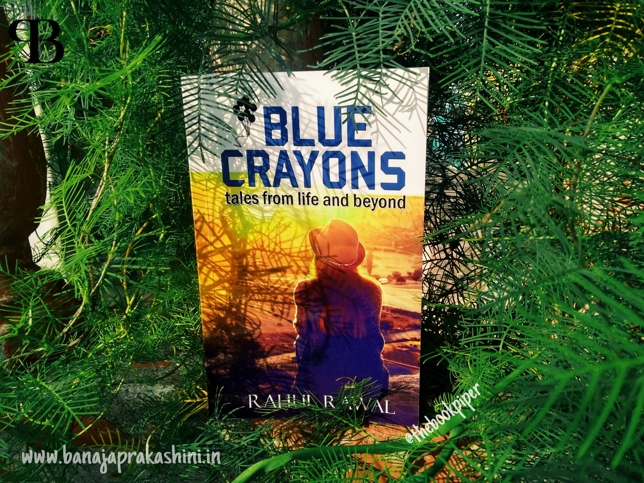 Review Pen: Blue Crayons by Rahul Rawal